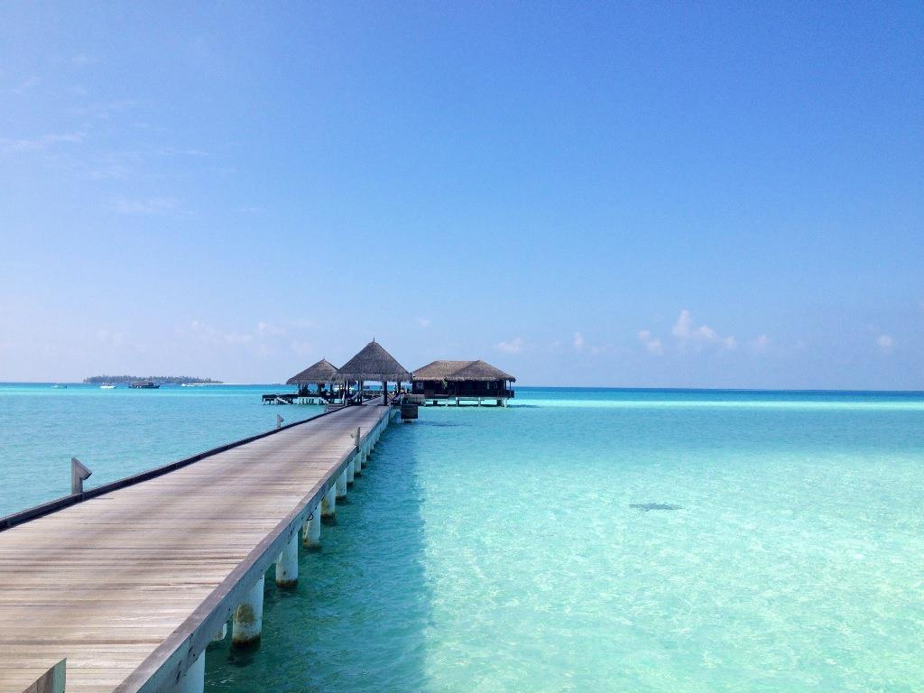 Taj Exotica Resort and Spa 5*